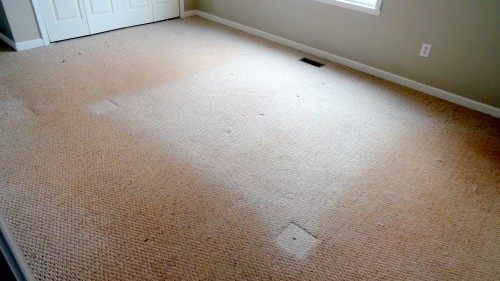 dirty carpet Before & after photos